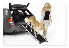 Dog ramp T5 until MY 2009 accessory